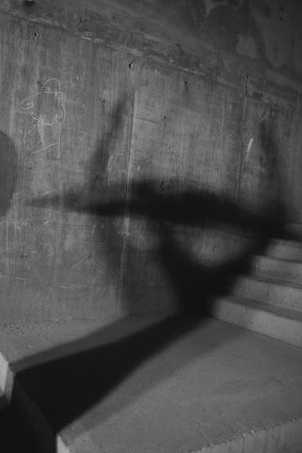 , 'Untitled (Codreanu/Brancusi V),' 2014, Ruth Benzacar Galería de Arte