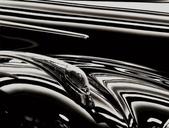 BMW - Kotflügel (BMW - Fender)
