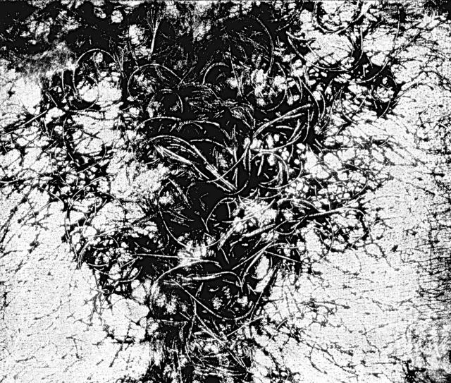 , 'Epidermic Scapes,' 1977, Bolsa de Arte