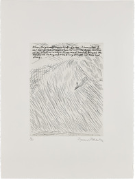 Untitled (When the Ground Becomes Clear and Firm)