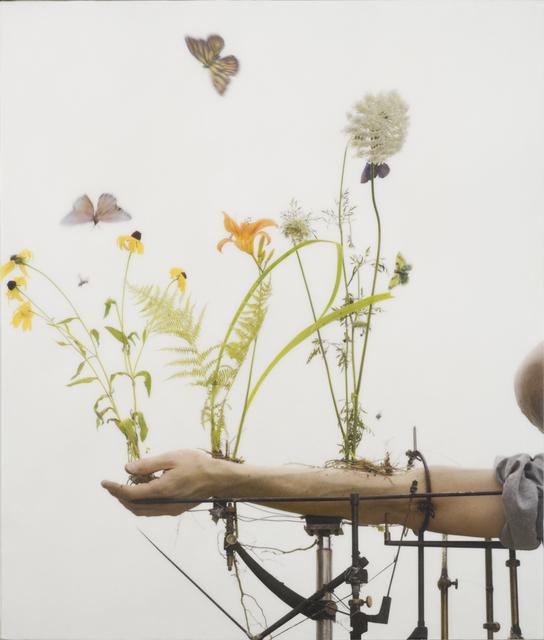 , 'Summer Arm,' 2008, Slete Gallery