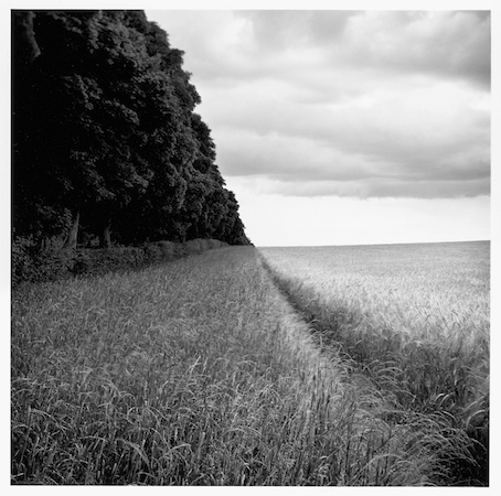 Paul Hart, 'Anmer', 2009, The Photographers' Gallery | Print Sales