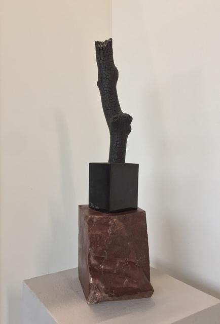 , 'Ramo Brucciato I,' 2019, Simard Bilodeau Contemporary