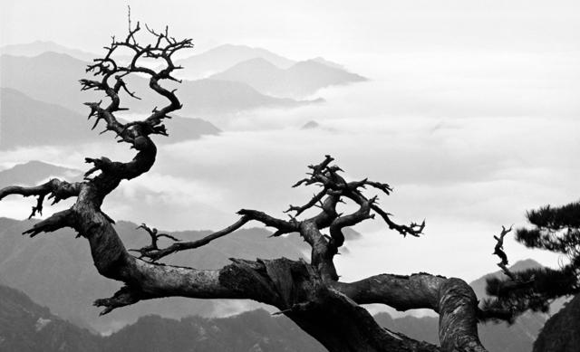 , 'Mount Huangshan A054WW52,' 1079, Three Shadows +3 gallery