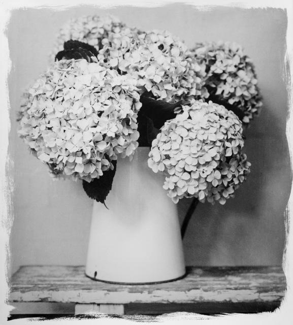 , 'Hydrangea in Vase,' 2017, HackelBury Fine Art