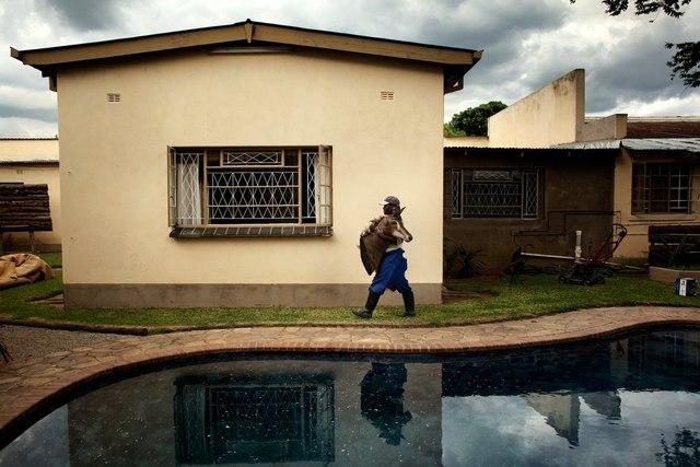 , 'ZIMBABWE Z 24,' 2012, Galerie Galea