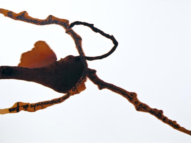 , 'Água-Viva Series,' 2012, Bolsa de Arte