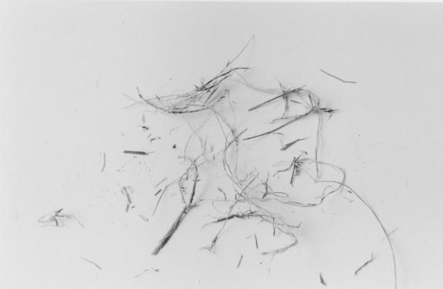 , 'The End (Nest Eight),' 1999, John Davis Gallery