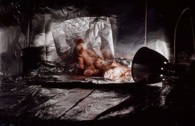 Clegg & Guttmann, 'Still Life with Chicken Bones', 2005, Galerie Elisabeth & Klaus Thoman