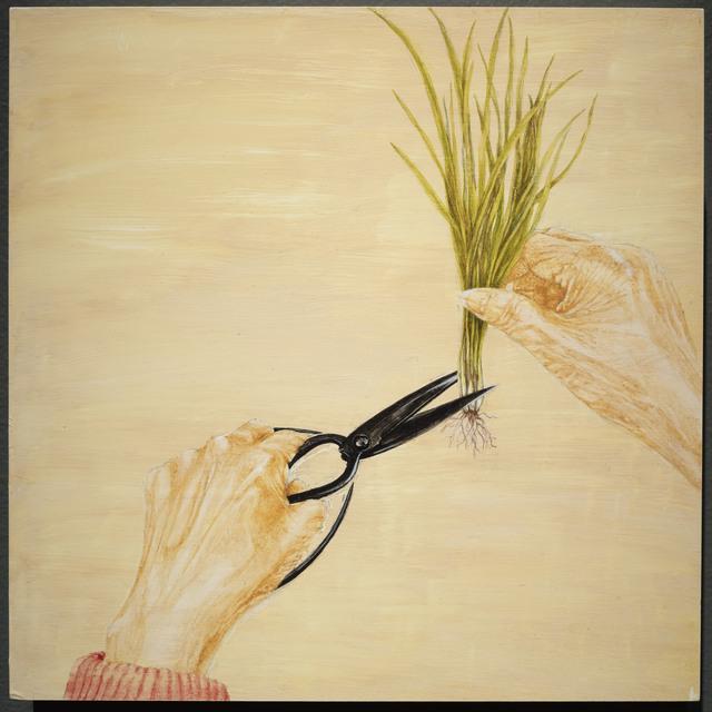 , 'Popo's Scissors: Cutting Chives,' 2018, Resource Art