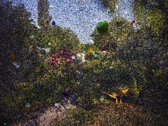 , 'Tent-Camera Image on Ground: View of Monet's Gardens with Wheelbarrow, Giverny, France,' 2015, Edwynn Houk Gallery