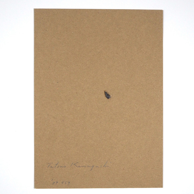 , 'Relation – One Seed of Lead / Grape,' 1987, SNOW Contemporary