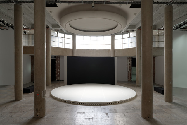 , 'How Can We Know the Dancer from the Dance?,' 2012, Palais de Tokyo