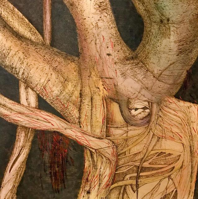 , 'Cuban Laurel,' 2019, Alpha Gallery