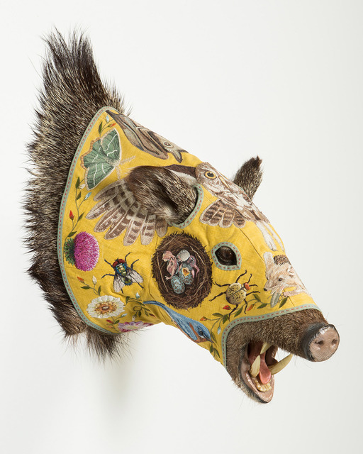 , 'Javelina - Yellow,' 2016, Antieau Gallery