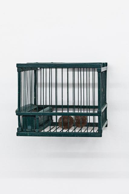 , 'Green Cage,' 2014 , Galleria Continua