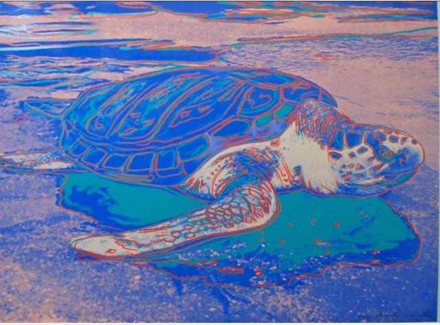 Andy Warhol, 'TURTLE FS II.360A', 1985, Print, Screenprint on Lenox Museum board, Robin Rile Fine Art