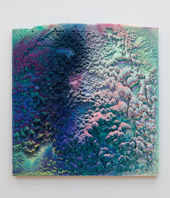 , 'Verphyta,' 2018, David B. Smith Gallery