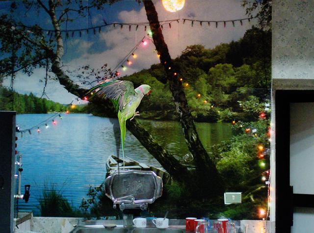 , 'Untitled,' 2015, Rosa Santos