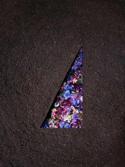 , 'Dirt and Flowers (Poisonous),' 2018, Winston Wächter Fine Art