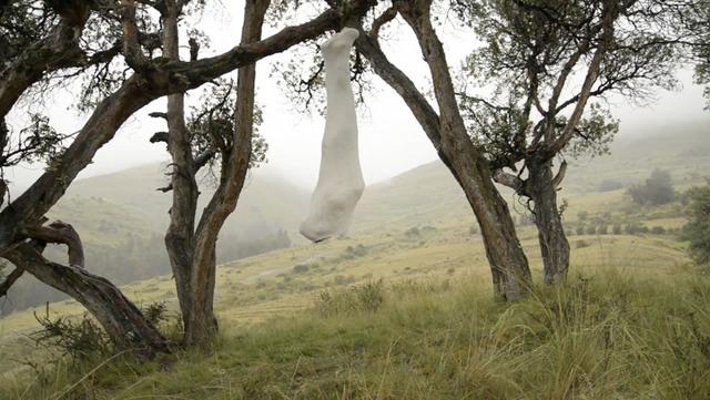 , 'Suspendido en la Queñua,' 2014, Barbara Thumm