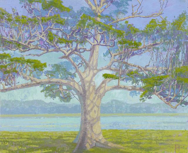 , 'White Tree, Udawalawe, Sri Lanka,' 2017, John Martin Gallery