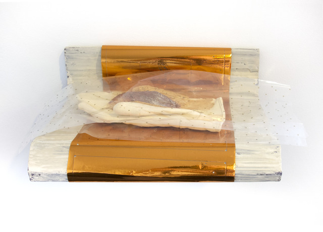 , 'Ladies Soft Leather (mink),' 2015, DePaul Art Museum