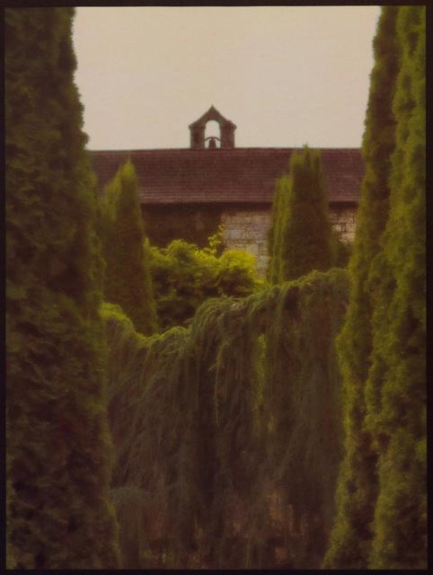 , 'Garden Hedges,' , Soho Photo Gallery