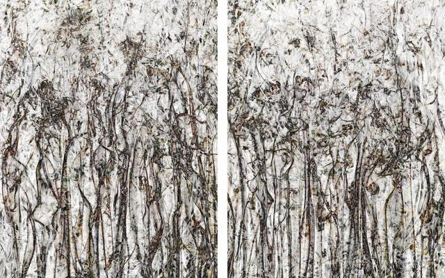 , 'Perception#25 (Diptych),' 2018, Julie M Toronto