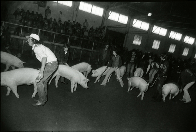 , 'Untitled, The Fort Worth Stock Show and Rodeo,' 1974-1977, Rick Wester Fine Art