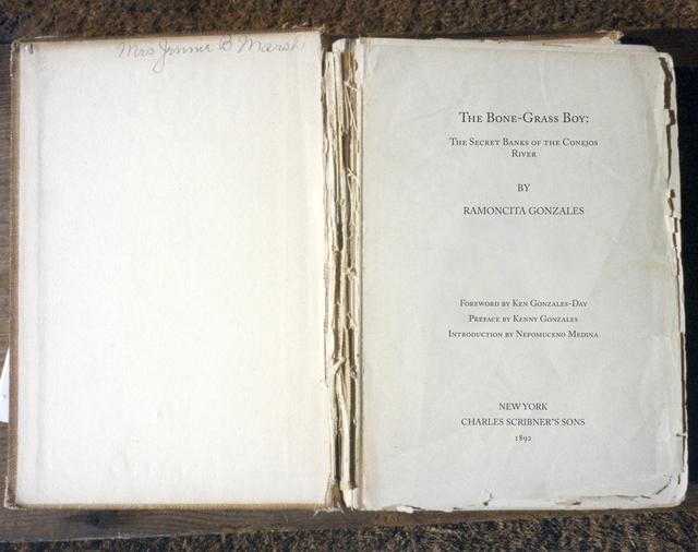 , 'Bone Grass Boy Spread #1,' 1993-1996 / 2017, Luis De Jesus Los Angeles