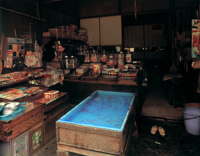 ", 'Asukasabashi, Torigoe: Cheap Sweet Shop, 1-21-3 Torigoe, Taito-ku, from the series ""Machi"",' 1977, PRISKA PASQUER"