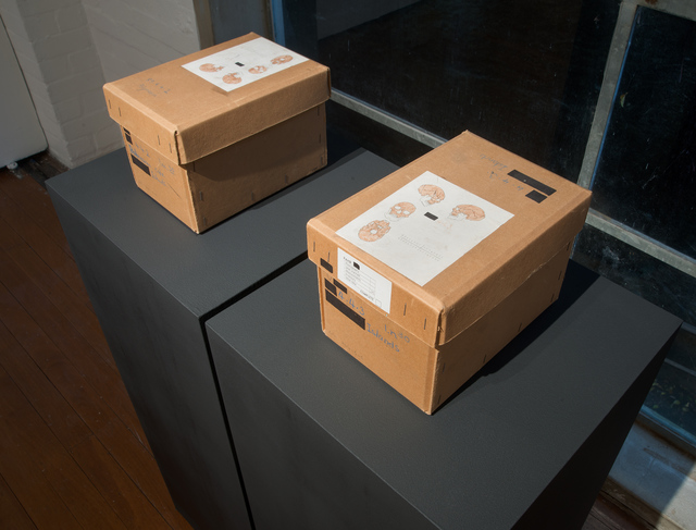 , 'Decommissioned skull boxes, Natural History Museum, London ,' 2017, Roslyn Oxley9 Gallery