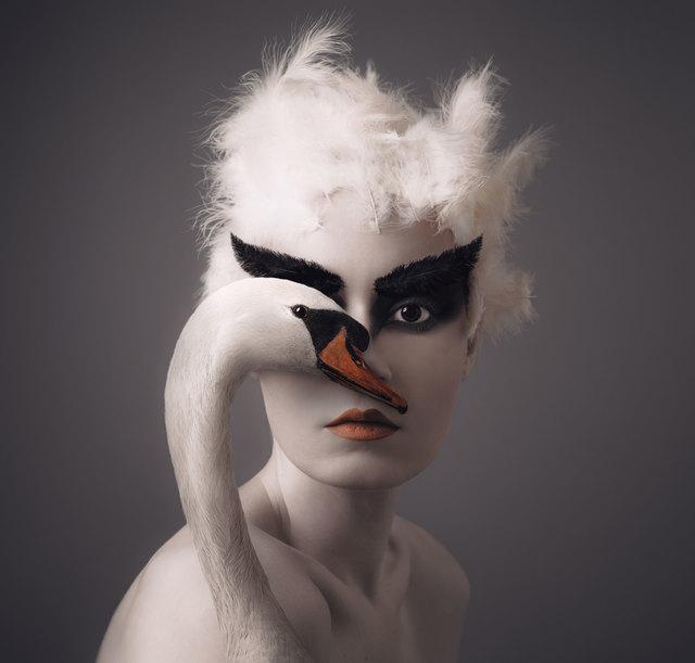 , 'Swan,' 2018, Anna Laudel