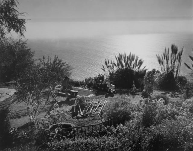 Wynn Bullock, 'Untitled [Man Looking At Ocean Near Big Sur]', 1954, Michael Dawson Gallery