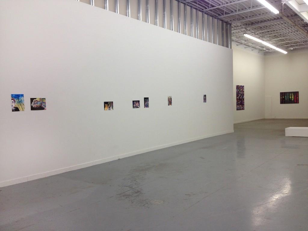 Installation view, Chameleon, 2016.