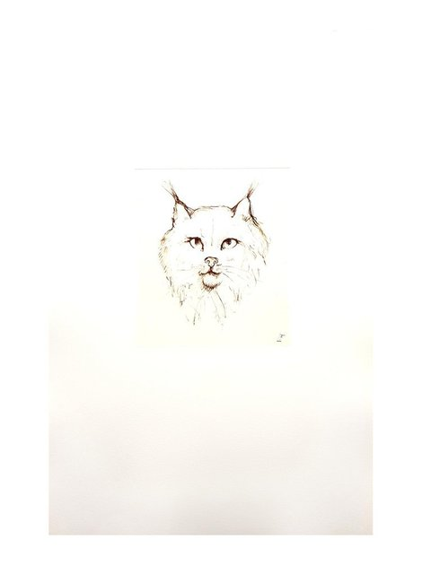 Leonor Fini, 'Leonor Fini - Cat II - Original Engraving', 1985, Galerie Philia