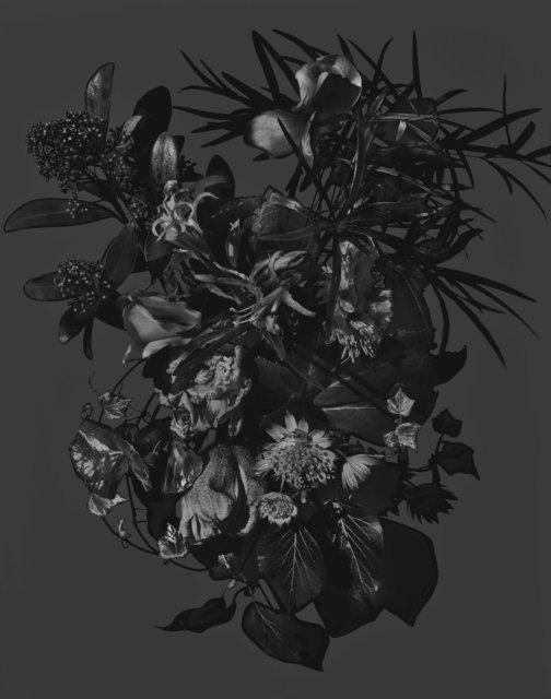 , 'Sans titre (Série Bouquets) ,' 2008, Galerie Nathalie Obadia