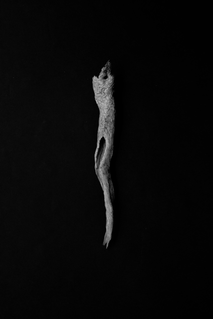 , 'Sea in Me #2,' 2015, Galerija Fotografija
