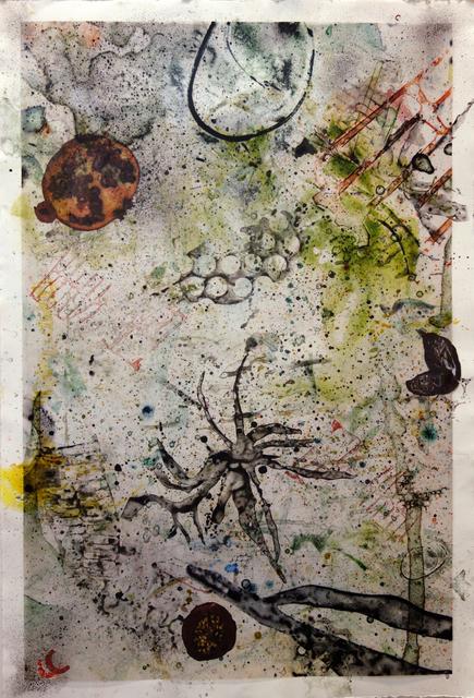 Yvette Drury Dubinsky, 'Flying Dates and Pomegranates', 2012, Bruno David Gallery