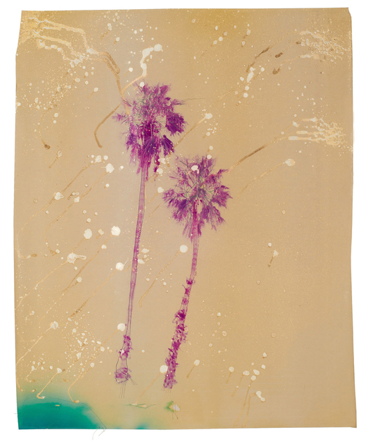, 'Acid Pink Palm Trees,' 2016, Alan Klotz Gallery