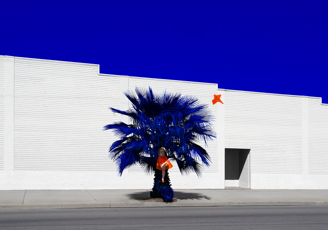 , 'Palm,' 2014-2016, Visions West Contemporary
