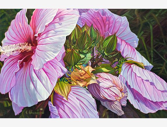 Paul Baldassini, 'Good Morning Hibiscus ', 2018, Addison Art Gallery