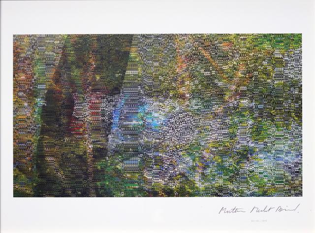 Mathieu Merlet Briand, '#Nature #62', 2019, Contemporary Art Platform Kuwait
