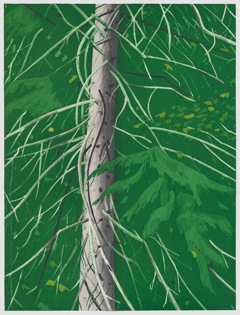 , 'Spruce,' 1994, Senior & Shopmaker Gallery
