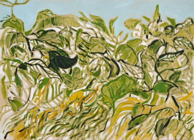 , 'The Garden,' 2016, Projet Pangée