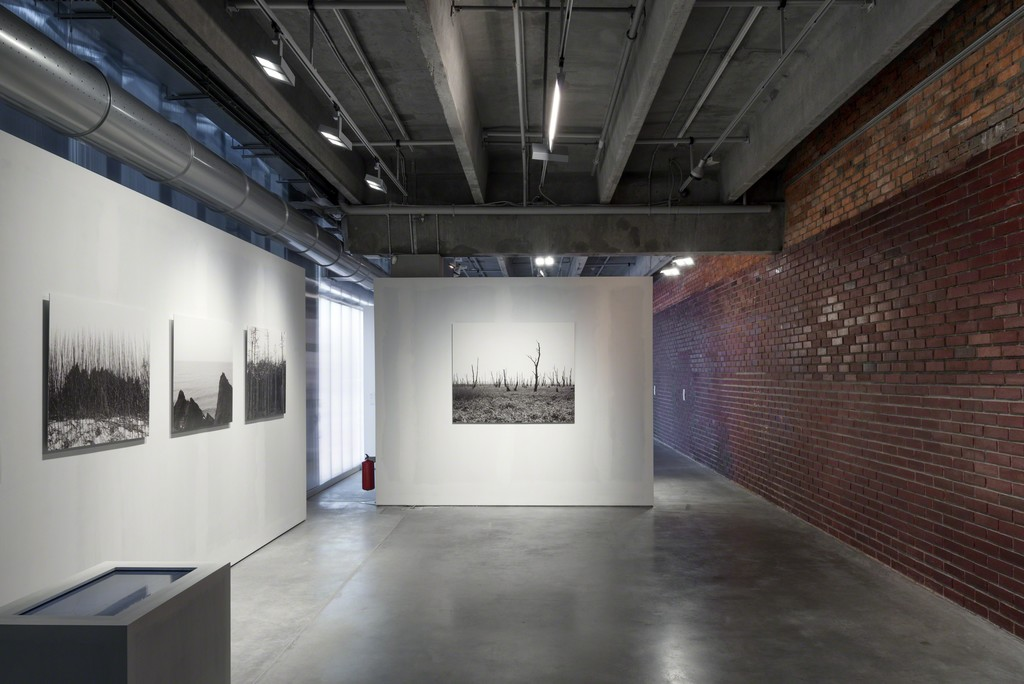 Fidelity to Place vector of Garage Triennial of Russian Contemporary Art Photo: Alexey Naroditskiy © Garage Museum of Contemporary Art