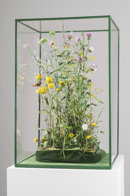 , 'Weeds,' 2015, Ronald Feldman Fine Arts