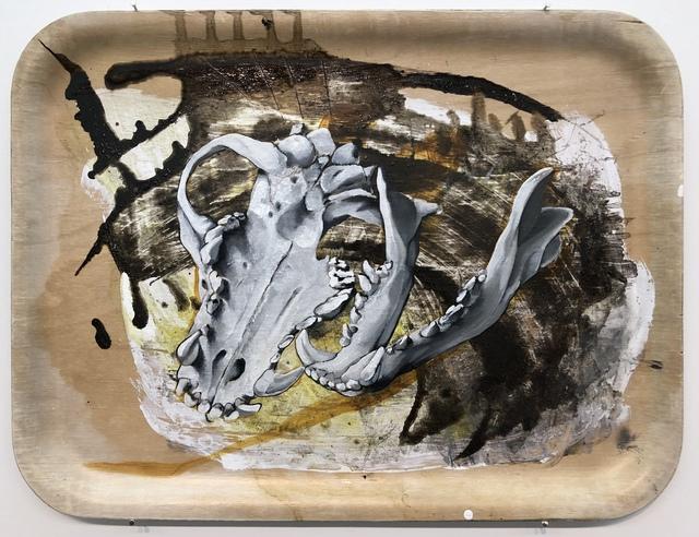 Sampsa Indrén, 'Head On A Plate II', 2018, SHIM Art Network