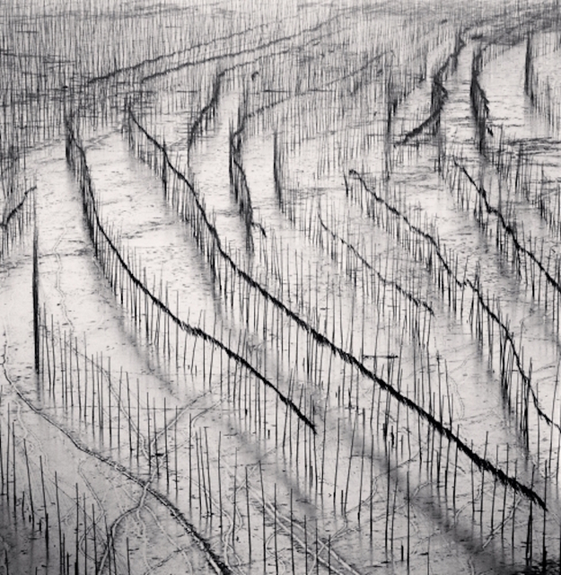 , 'Seaweed Farms, Study 10, Xiapu, Fujian, China,' 2010, Dolby Chadwick Gallery